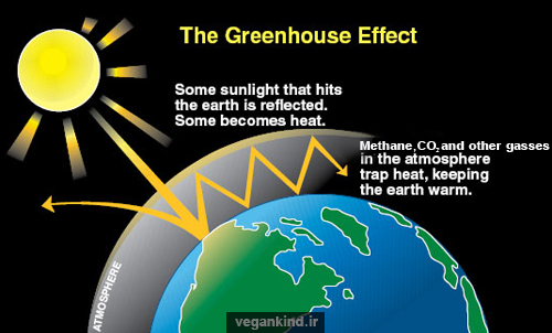 greenhouse effect2